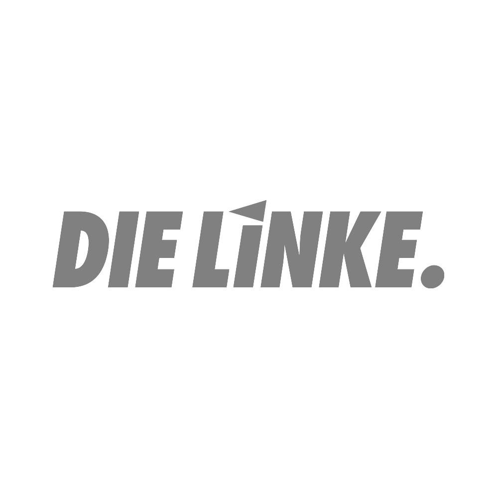 LOGO_Linke